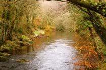 River Teign below Castle Drogo