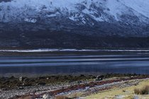Winter colours on Loch Slapin.