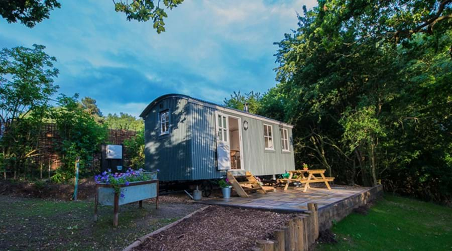 glamping, farm holiday, rural retreat, luxury camping, shepherds hut, bird watching, romantic break, short break close to London, shepherds hide, lakeside holiday