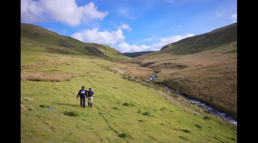 Walking in the Cambrian Mountains