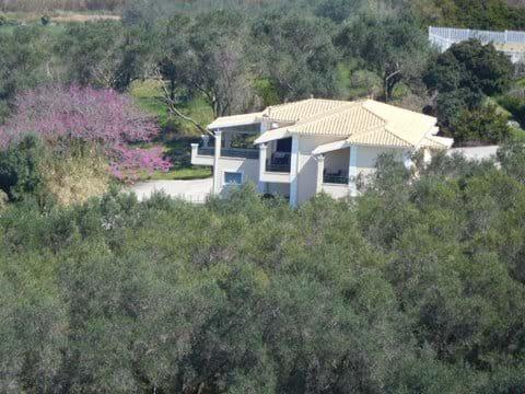 Bird's eye view of the villa