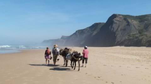 Donkey trekking fun