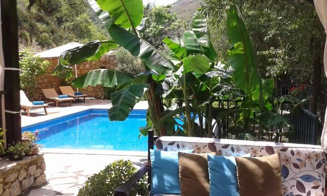 Escape the heat, under the pergola and banana trees