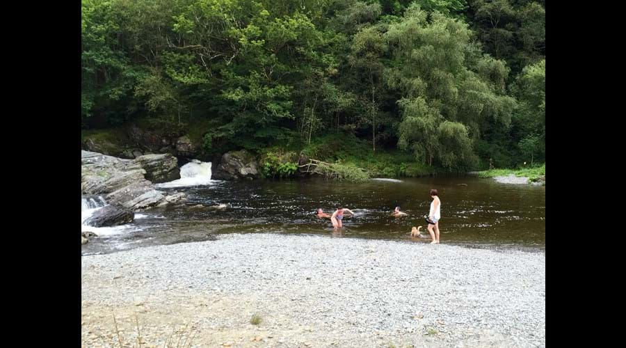 Rheidol valley, good spot for a picnic and walk the dogs.