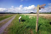 Ystwyth Trial on Cors Caron Nature Reserve