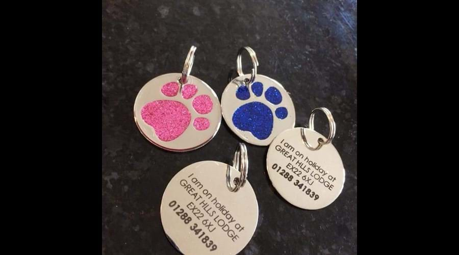Dog tags to use whilst out and about