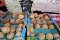 Charente stripey melons on a french market stall
