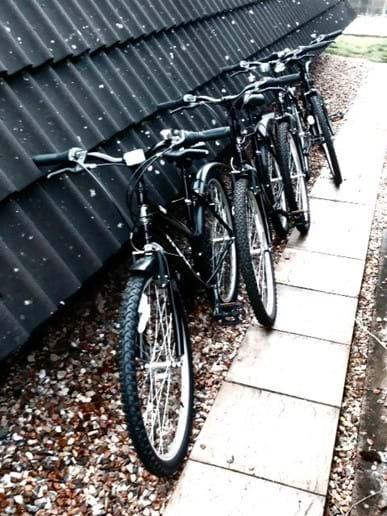 4 bikes. Free to enjoy.