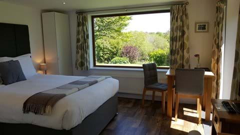 Sunny room with picture window