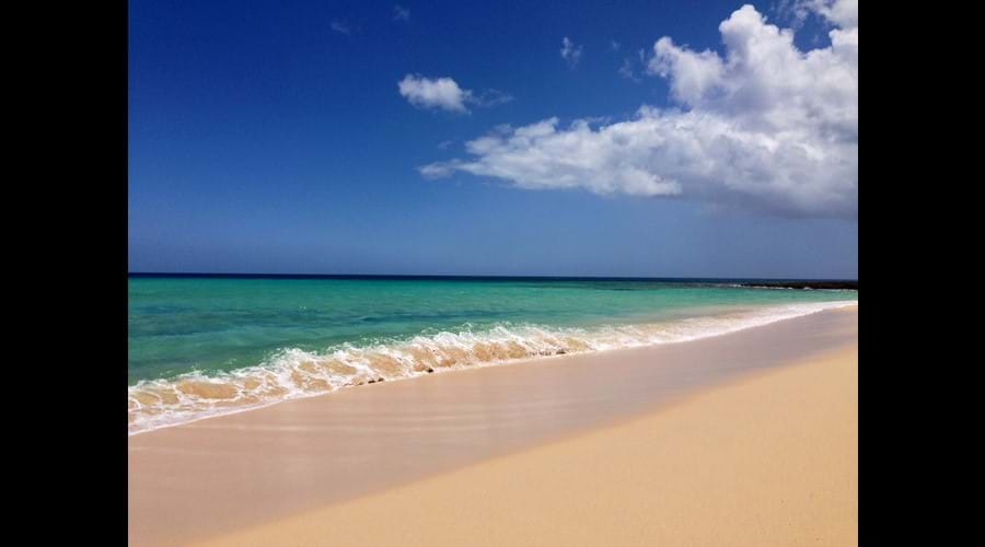 El Burro beach