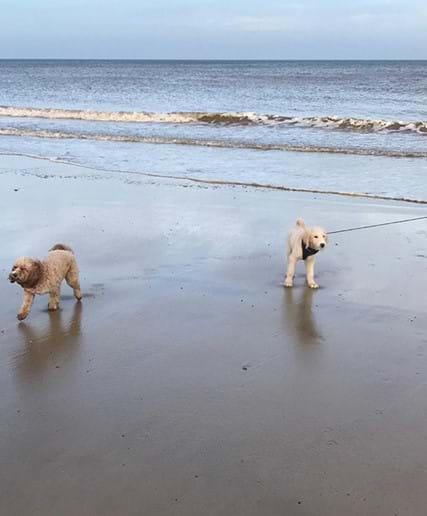 Enjoying Overstrand beach