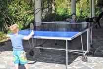 Ping Pong !