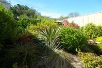 Orchid Cottage, holiday let garden, Axmouth, East Devon