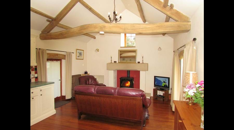 Comfortable living room with cosy wood burning stove