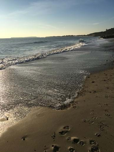 A walk along the beach at Highcliffe