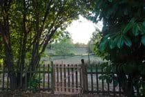 Back garden View