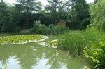 Home Farm Fisheries. Five minutes walk to an all year round, mature, day/evening/night fishing spot.