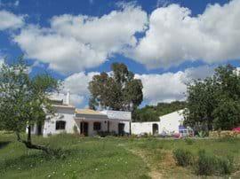 villa in Spring