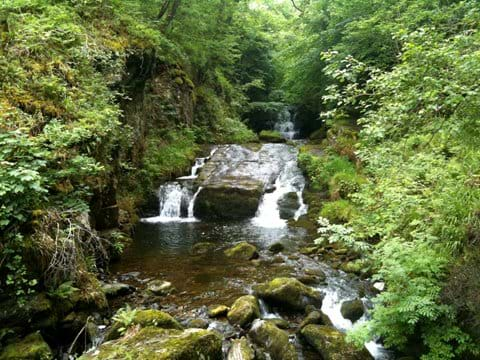 An Exmoor waterfall in a wooded valley