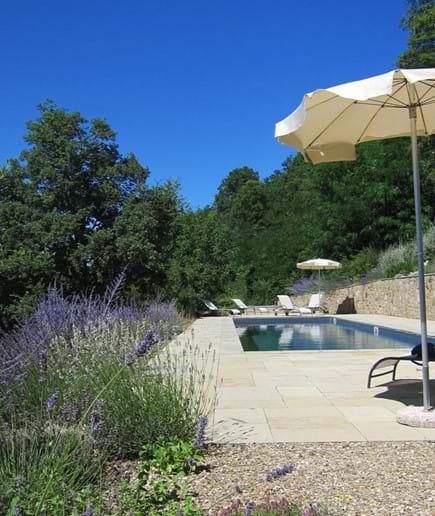 The pool looking towards the hazel wood