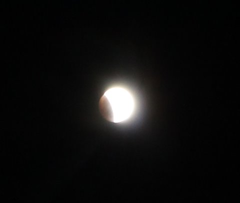 Trellis Bay - view of moon during eclipse