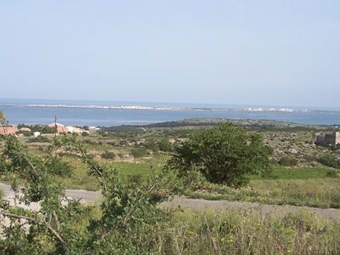 View from hill above Fitou