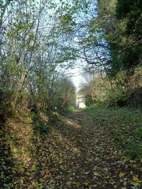 Village footpaths...