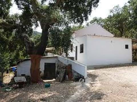 Hobby farm for sale in Monchique