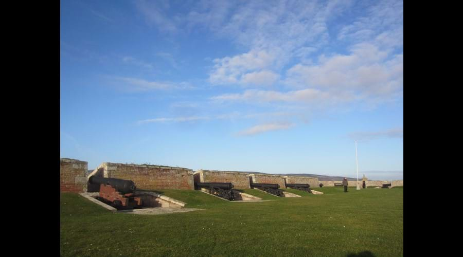 Fort George cannons