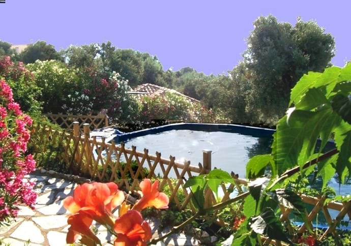 Orchard Villa pool and terrace