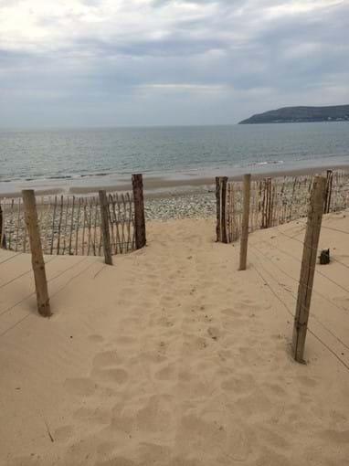 Conwy Morfa - our local dog friendly beach