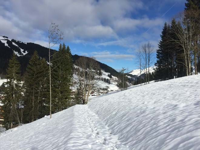 Route to the slopes of Chavannes 130 meters