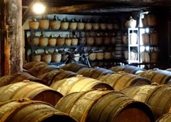 Cognac - Tasting Tours