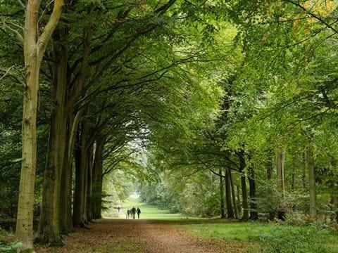 Felbrigg Hall Garden & Estate National Trust