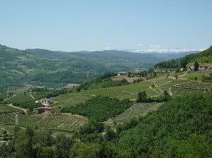 The Bormida valley