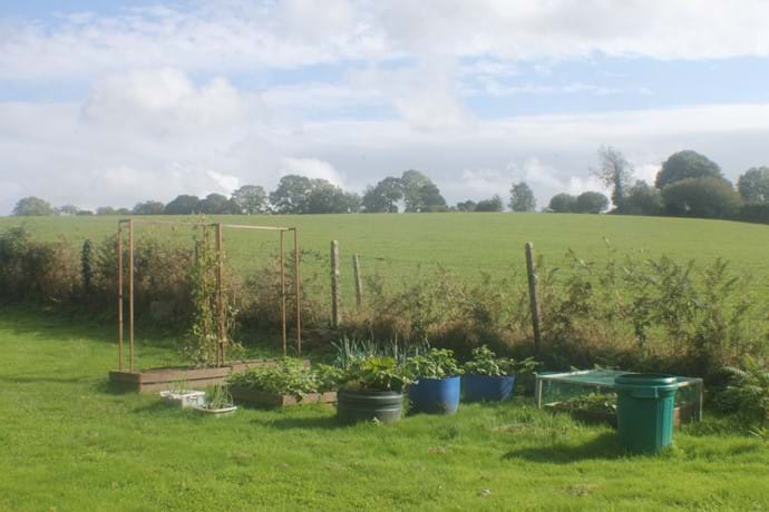 View from the Orchard