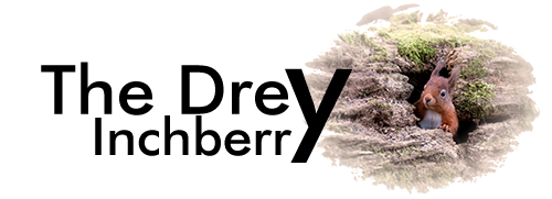 Logo - The Drey Inchberry