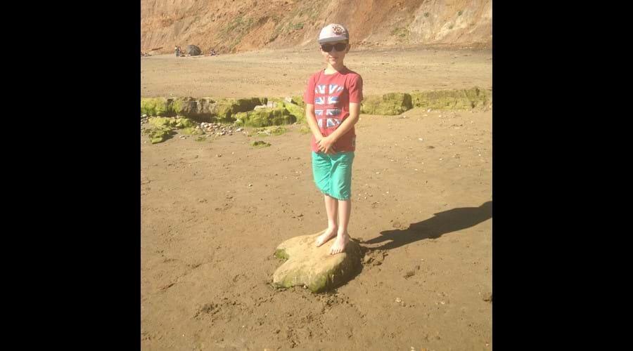 casts of three-toed dinosaur footprints found on nearby Brook Beach.