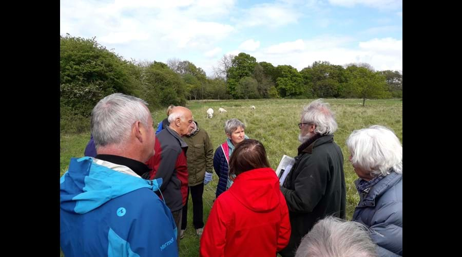 Initiative visit to Noakes Grove Nature Reserve in Sewards End on 5 May 2019