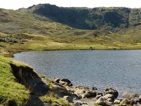 Wild swimming? Easedale Tarn