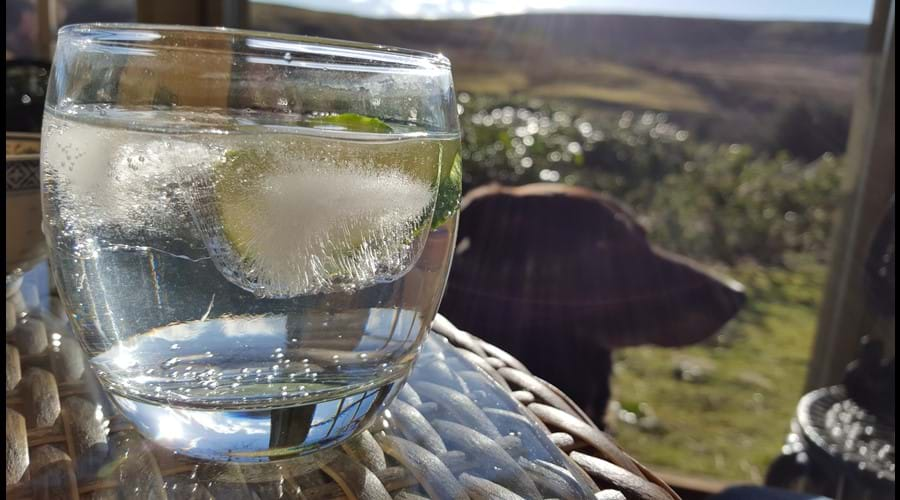 Gin and tonics in the Summerhouse