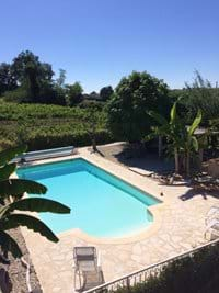 Beautiful Tranquil Pool surrounded by owners vines