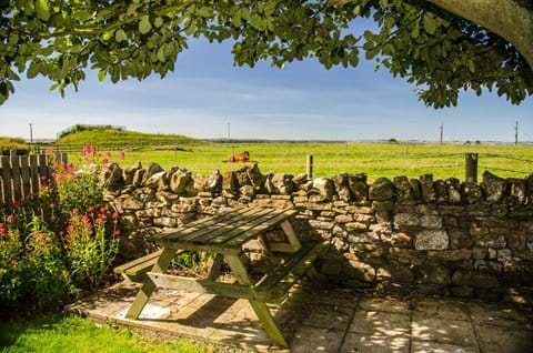Picnic Bench at the bottom of the Garden overlooking open fields with Horses