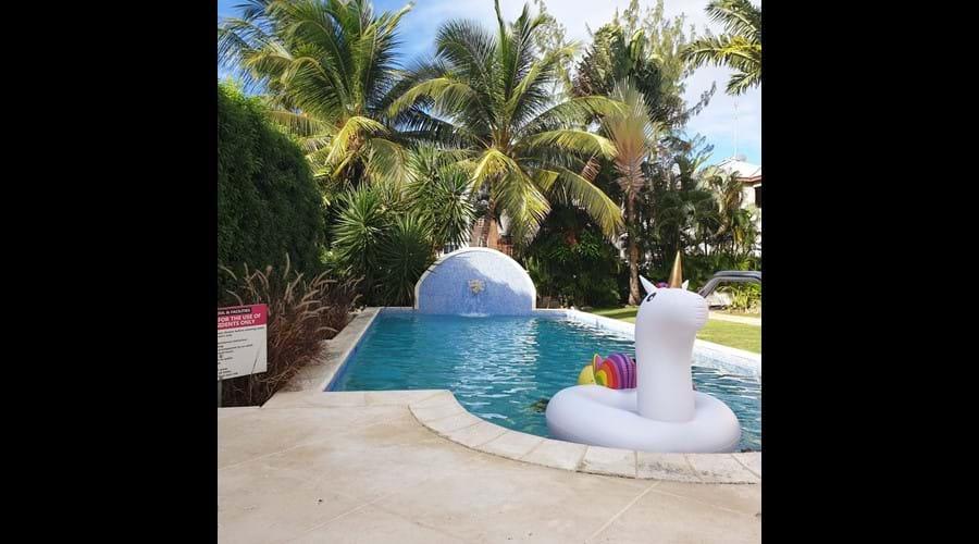 Ajoupa unicorn and communal pool