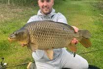 Carp caught on top lake at Lynstone Lakes