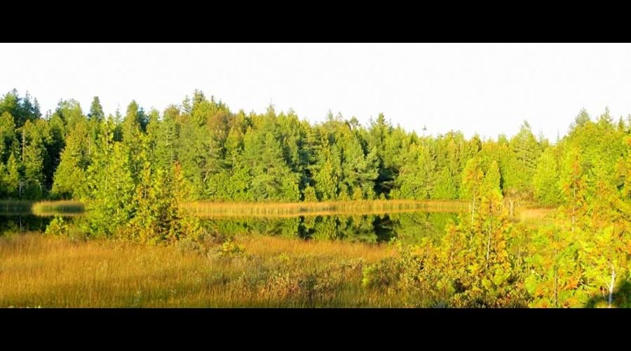The Northern Bruce Peninsula is the place for an incredible late day light in the early fall.