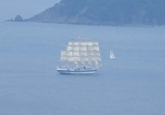 June 2016 - Every so often something like this just happens to sail past the front door!