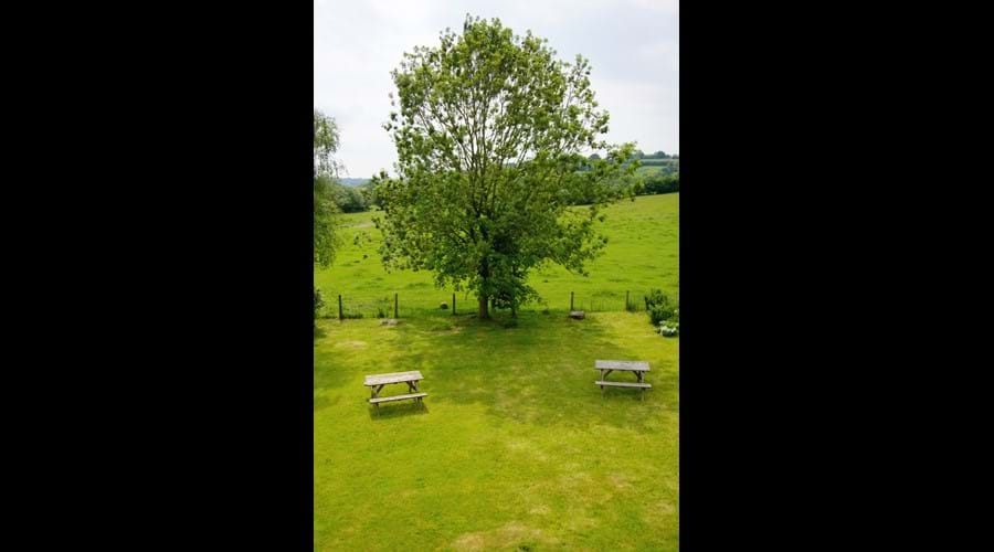 Image of Murmur Aeron Garden