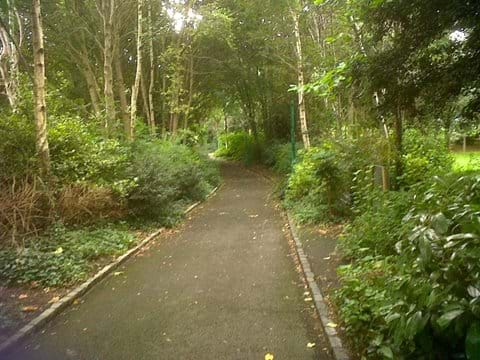 Take a woodland walk in Merrion Square Gardens. Just by the National Gallery