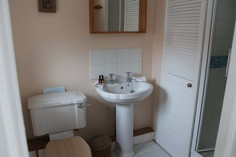 Shower room, with basin and WC